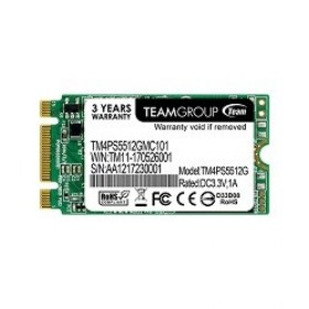 Cumpara Hard M.2 128GB SSD Type 2242 Team TM4PS5128GMC101 magazin md